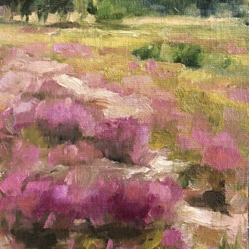 Heide Grote Peel