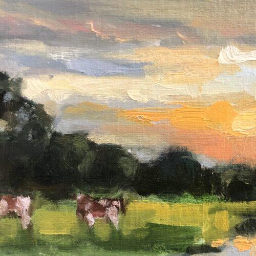 Koeien in Vlierden
