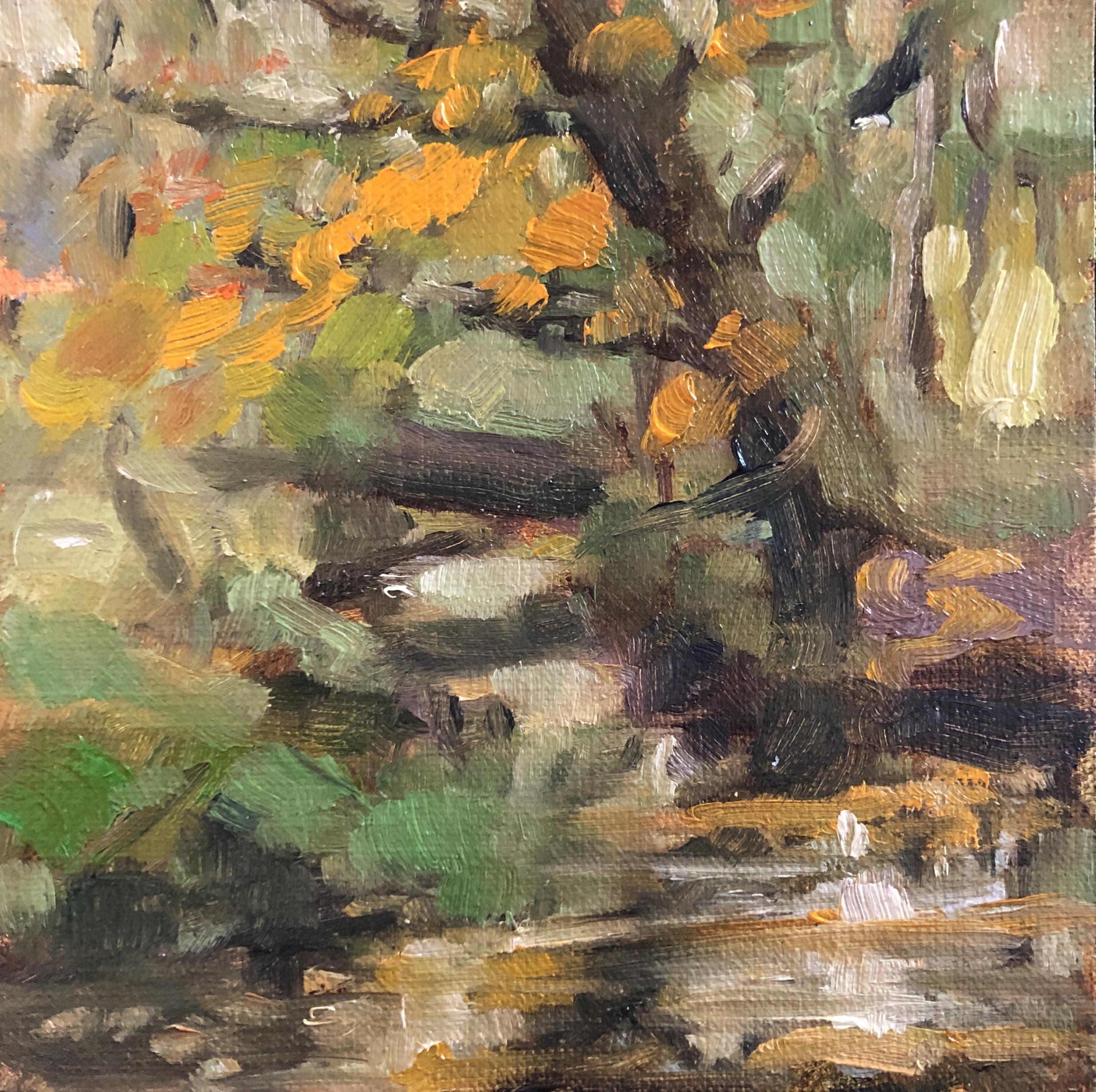 Herfst in de Berken