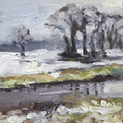 Sneeuw langs de Aa in Vlierden