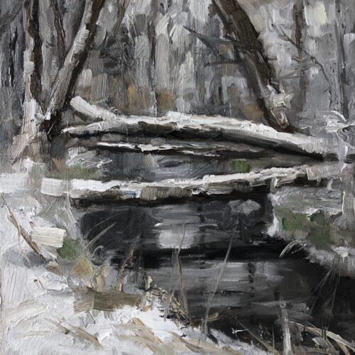 De Berken in de sneeuw
